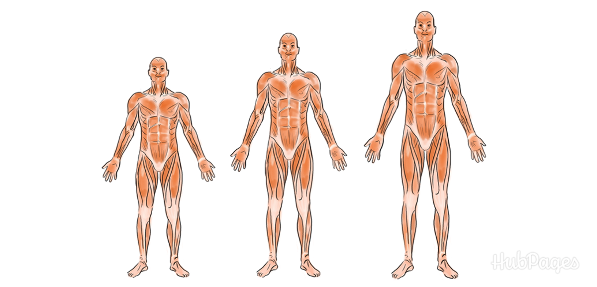 Grow taller with these simple exercises!