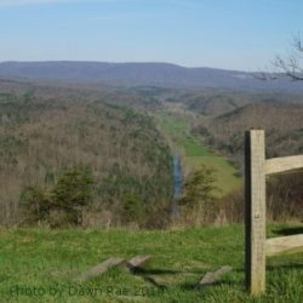 visit-green-ridge-state-forest