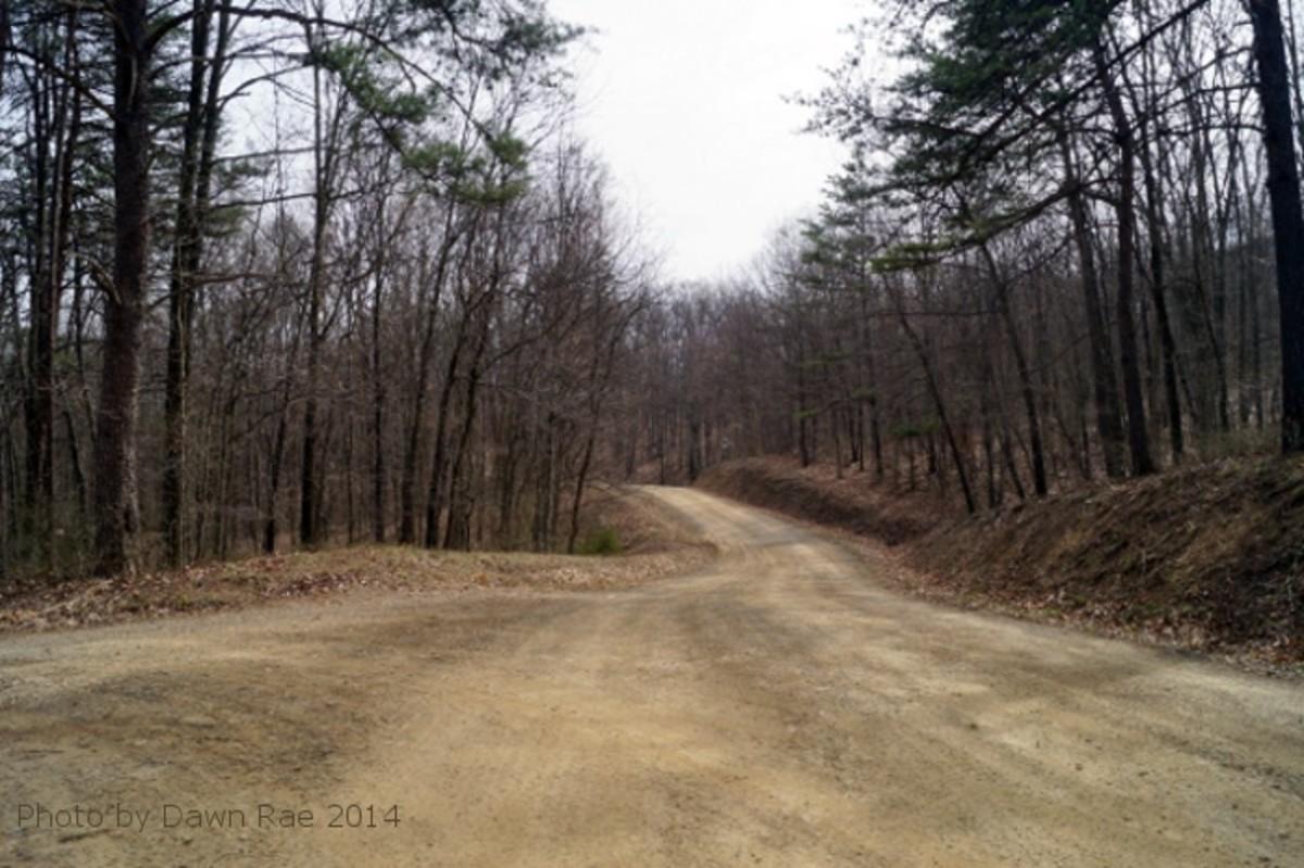 Dirt roads.  The vast majority of the roads in Green Ridge are dirt roads.