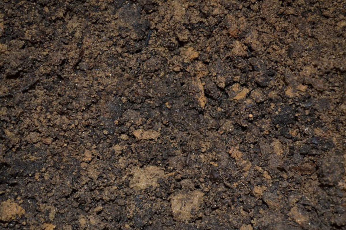 The ideal soil mix.