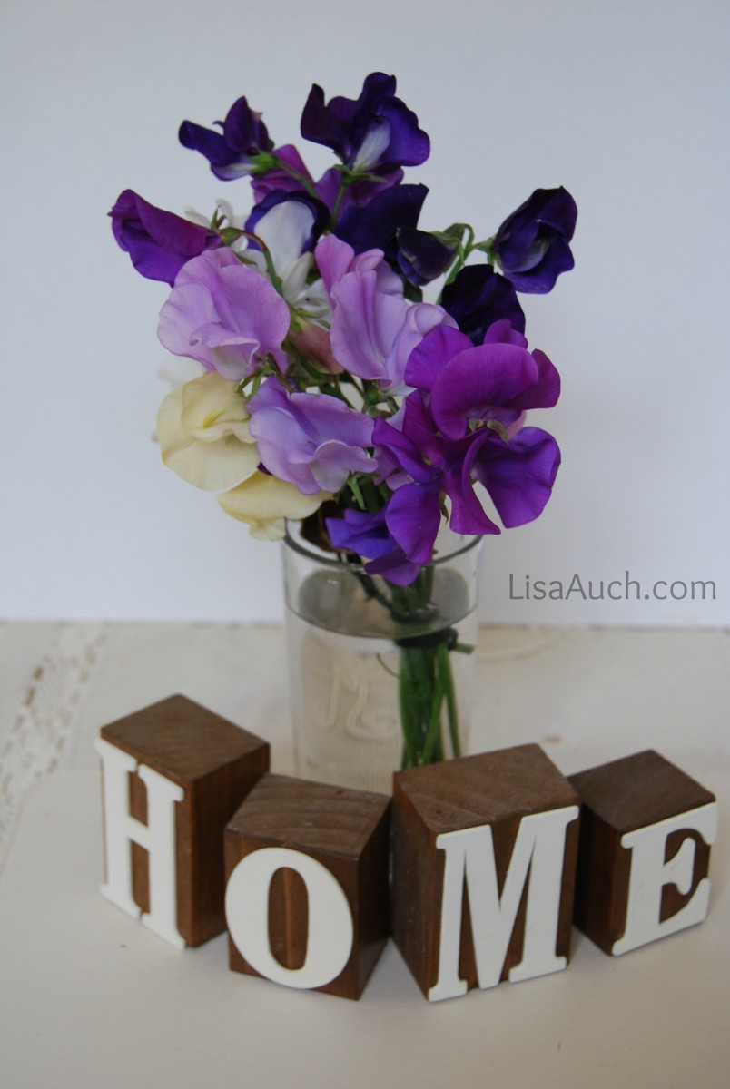 how to grow sweet peas from seed