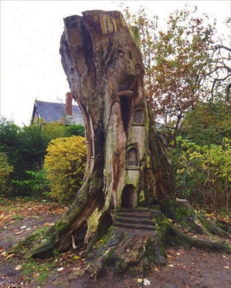 A Fairy Tree Home located in Worthington Park, Sale, England (near Manchester).