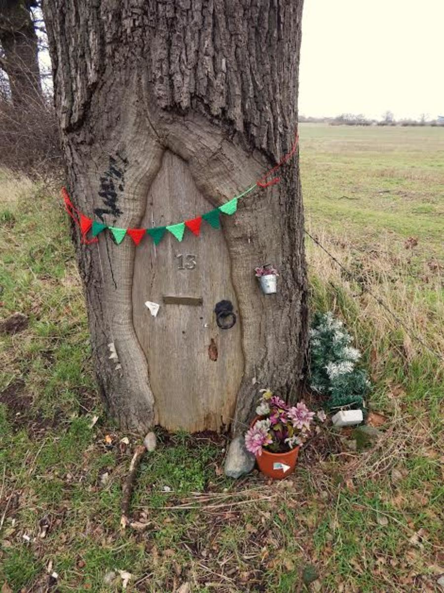 Fairy door in a tree trunk located near Marston Green in the West Midlands, UK. Photo by Polly Jones, used with permission.