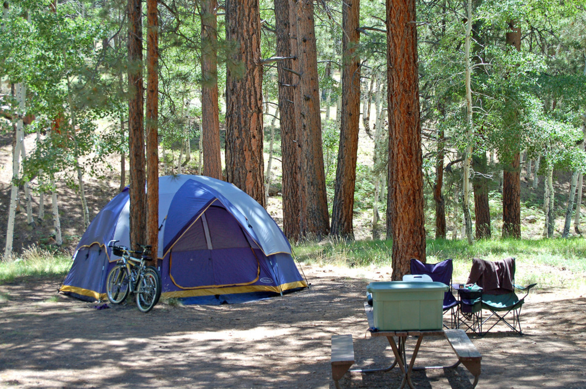 Best Family Tent for Camping