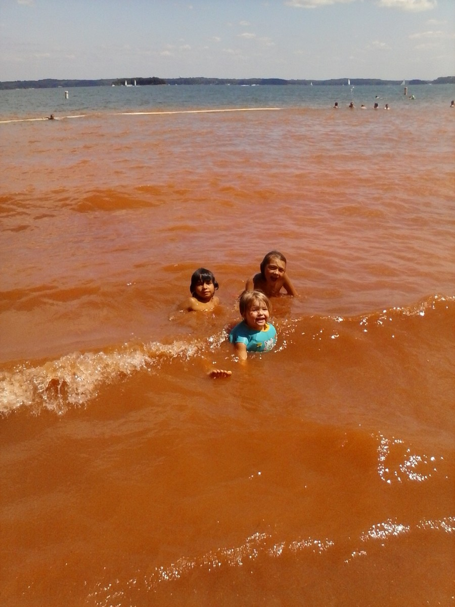 My Trio in the muddy water at Broyles Recreation Area!
