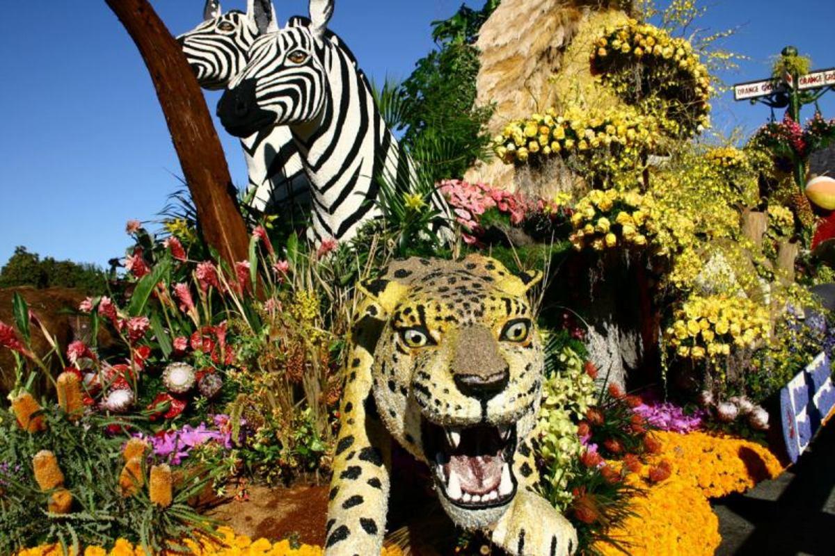 A Flowery Jungle