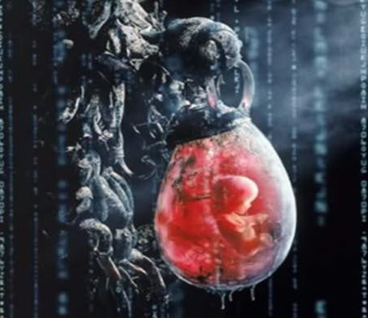 The Matrix premise relies heavily on the nonsense concept that machines are using human beings raised in a synthetic womb to derive their vital electrical power.
