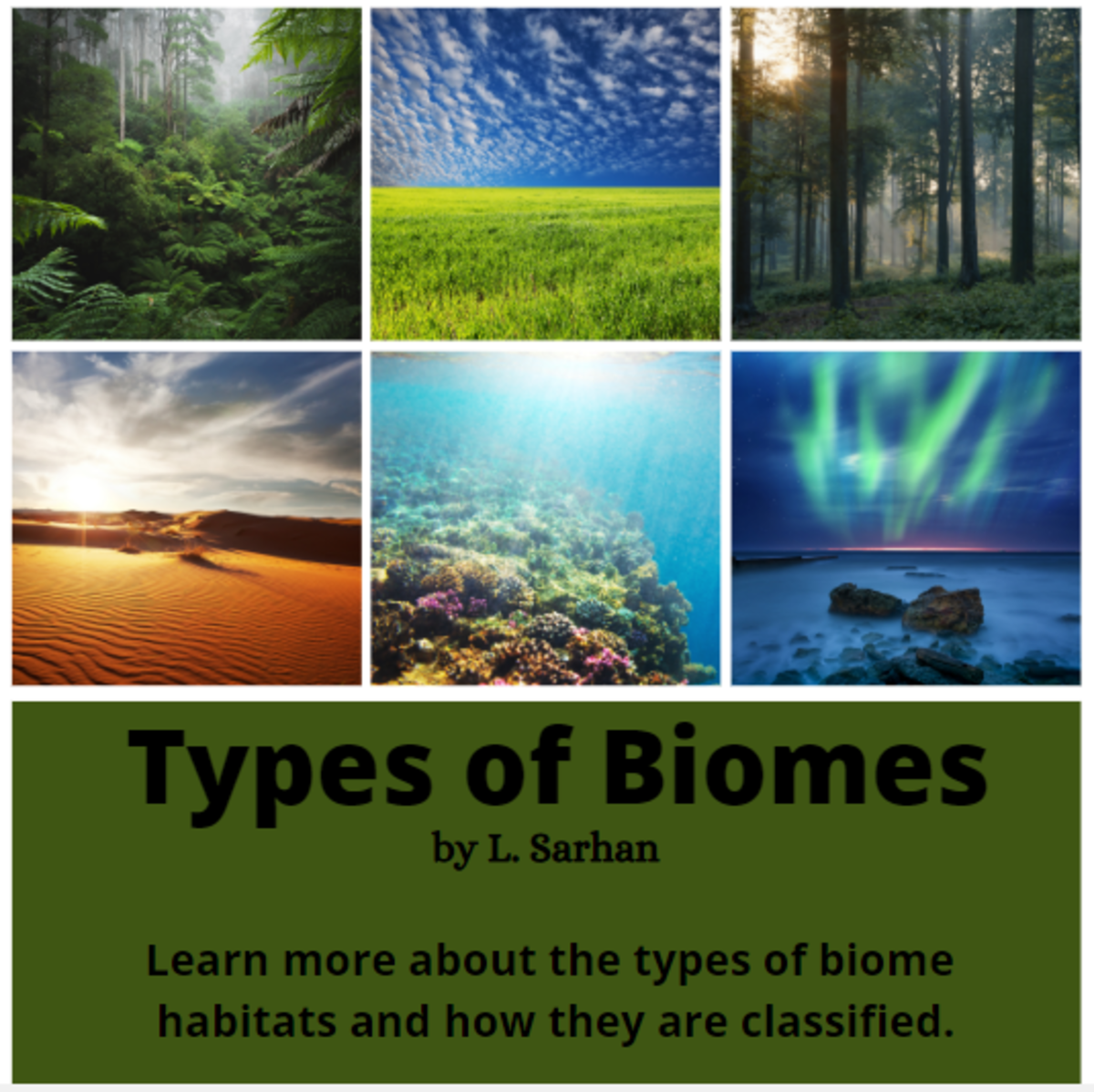 Types of Biome Ecosystems