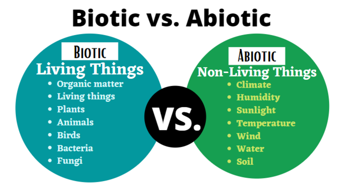 Knowing how living things (biotic) interact with non-living things (abiotic) is important in understanding how they shape major biomes in the world.