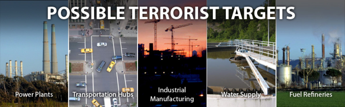 Understanding Terrorism and Terrorist Organizations
