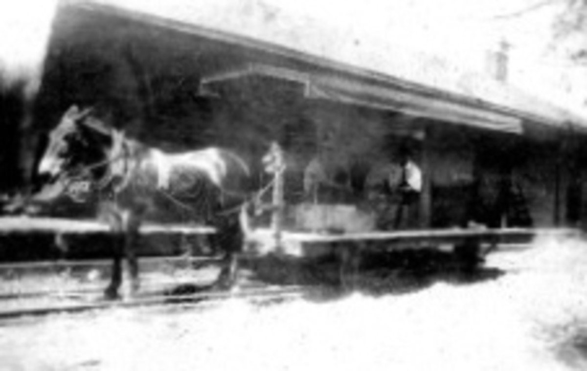 Mule Driven Trolley