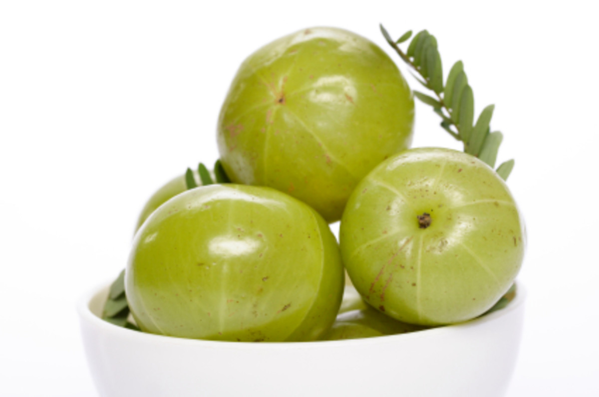 Amalika - a rich source of Vitamin C, a powerful antioxidant.