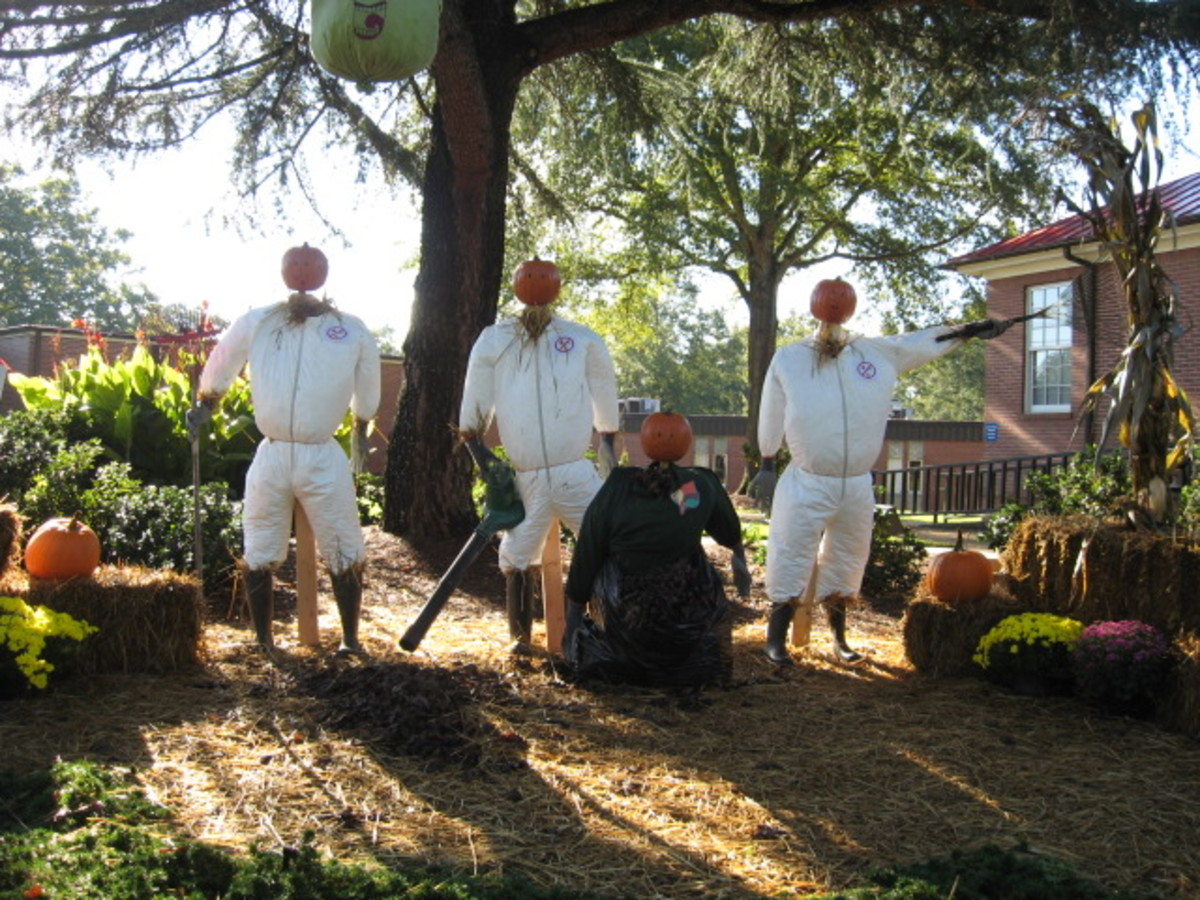 13. Who You Gonna Call? Leaf Busters!