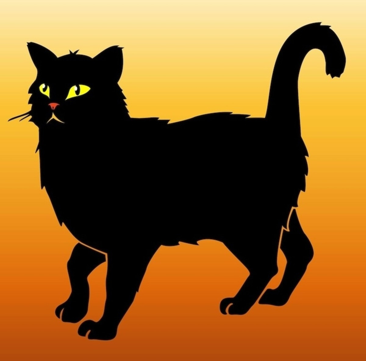 Halloween Cat on Orange Background