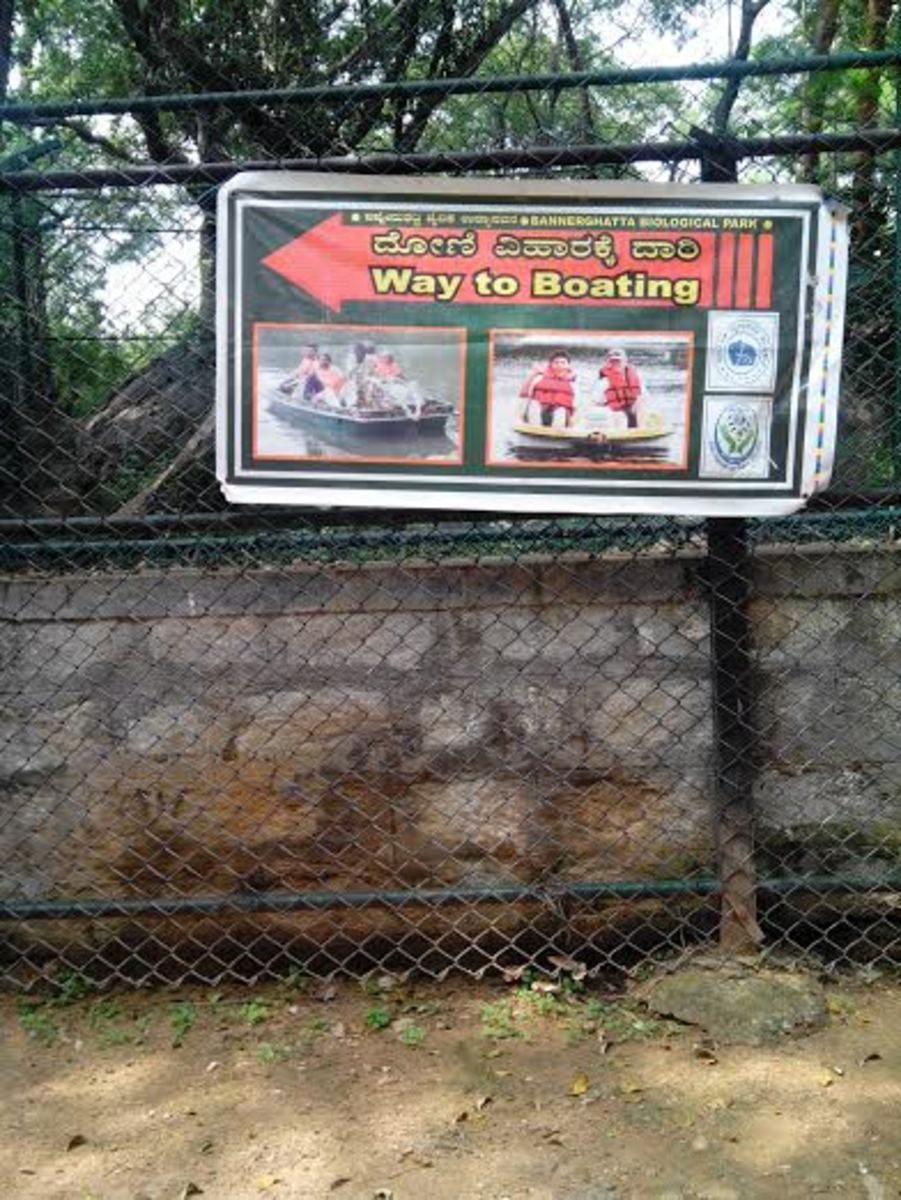 a-visit-to-bannerghatta-national-park-bangalore-india