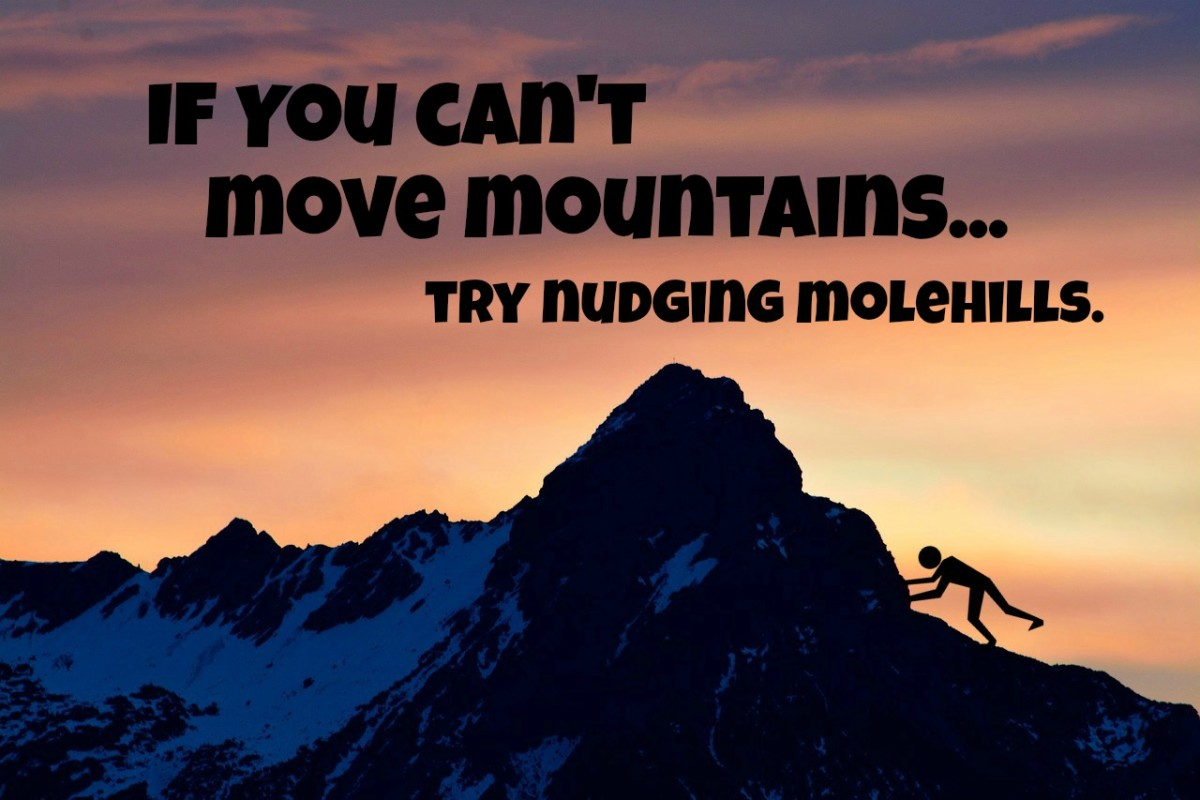 If you can't move mountains, maybe you can nudge molehills.