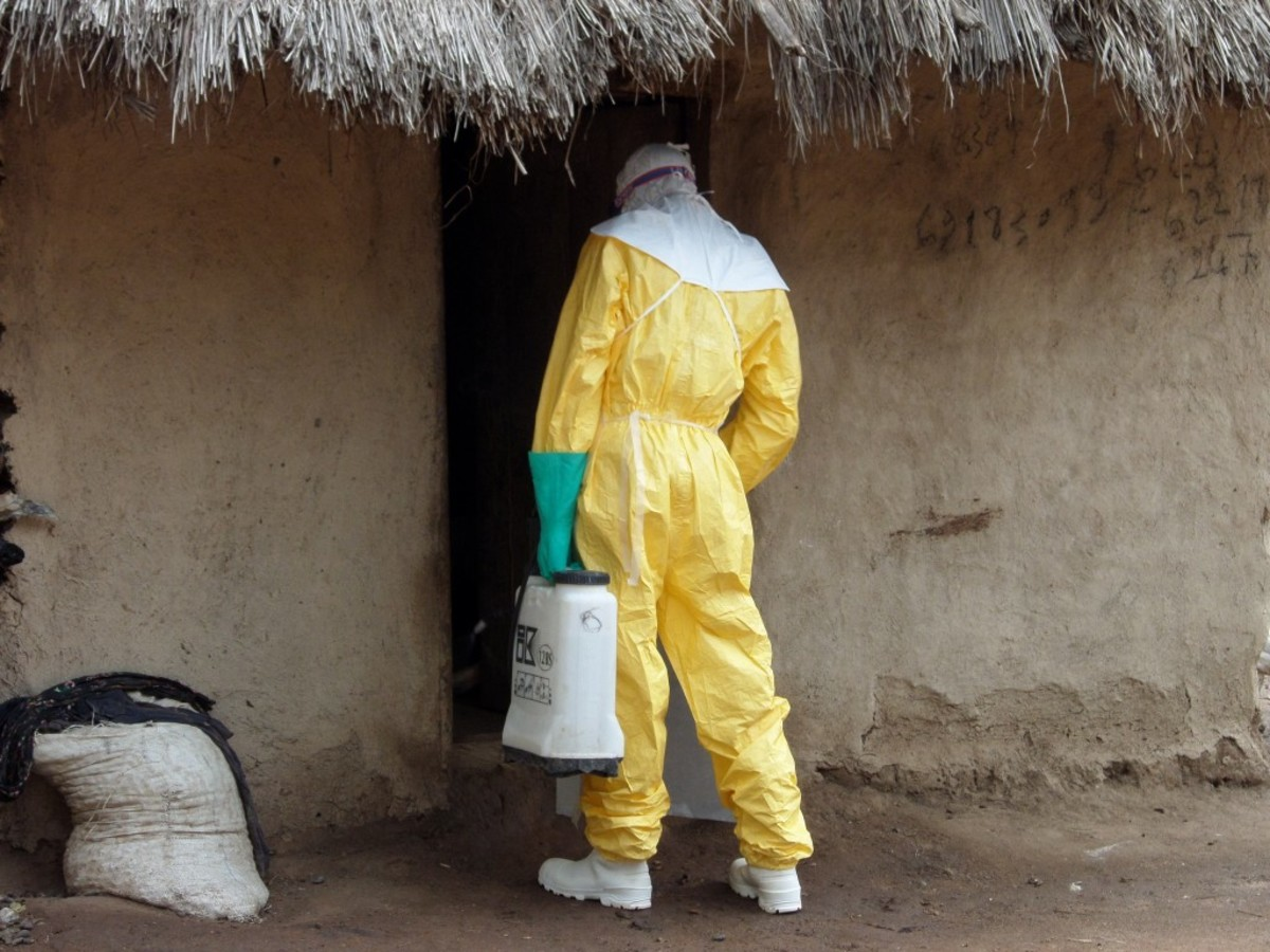 A humanitarian aidworker assists in controlling Ebola in the West African nation of Guinea