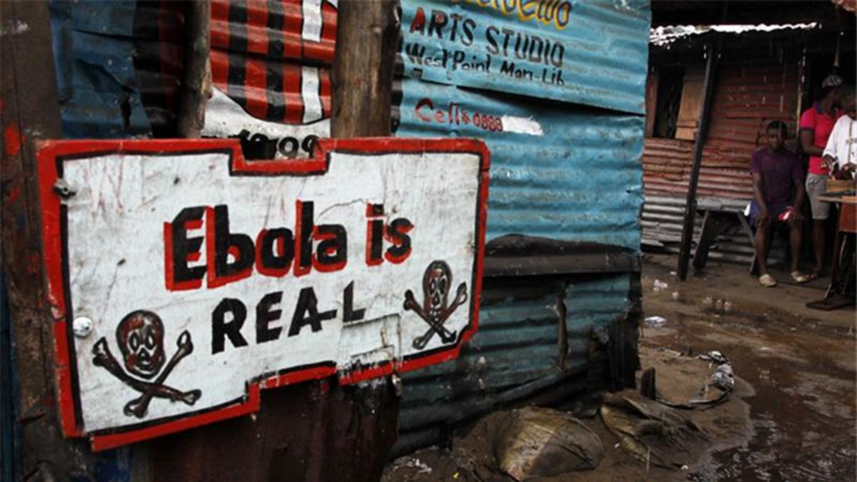 ebola-lassa-hemorrhagic-fevers-marburg-swine-flu-legionaires-diseases-the-thirdworldization-of-the-plagues