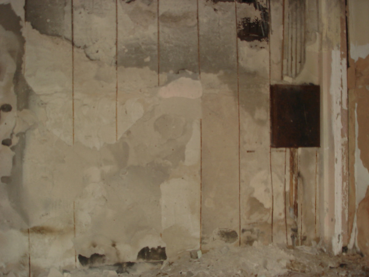 This wall was white and dirty, the developed photo shows people. Was there once a mural or were these people who lived in the home and still there.....no one will ever know.