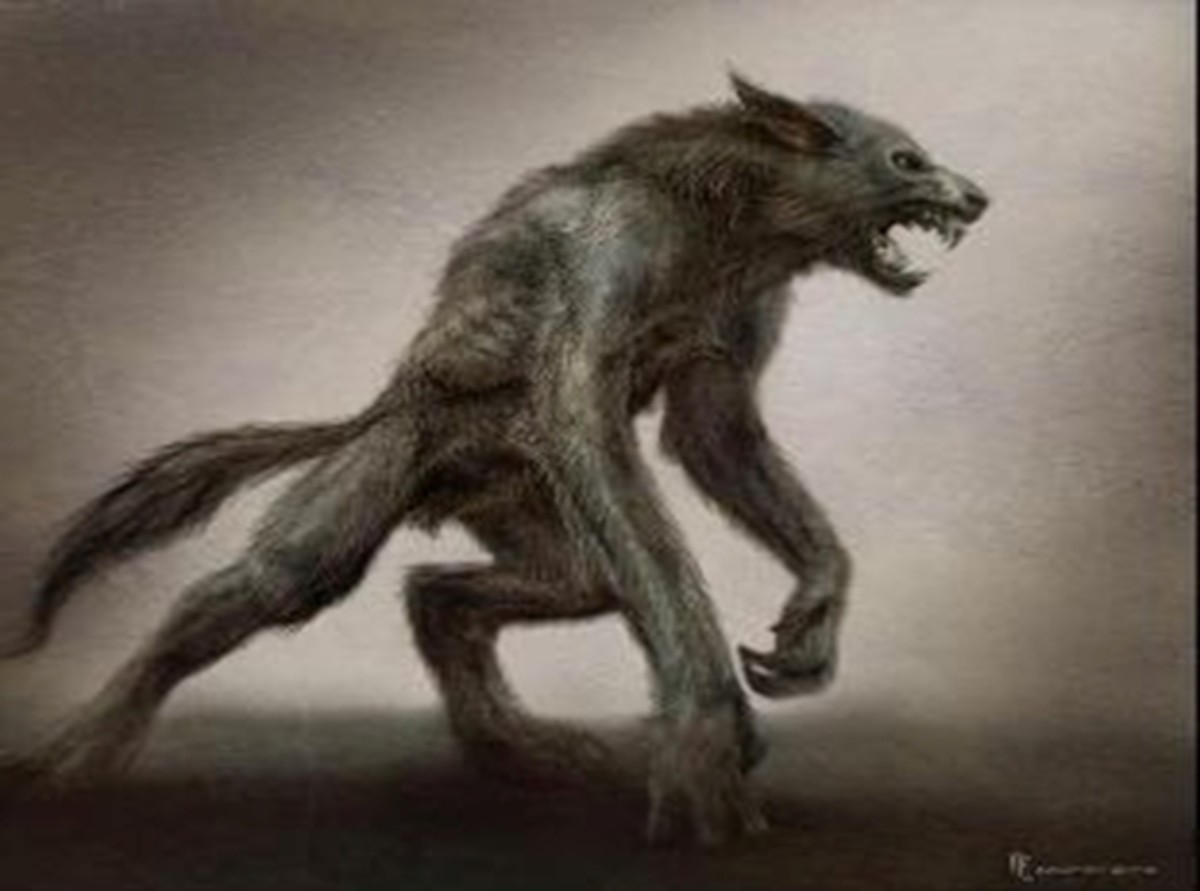 Just one of many artist renderings of the Beast of Bray Road
