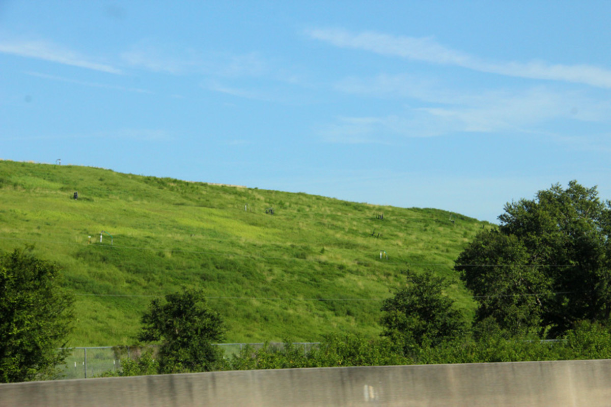 Florida builds mountains out of Garbage, not Mole hills.