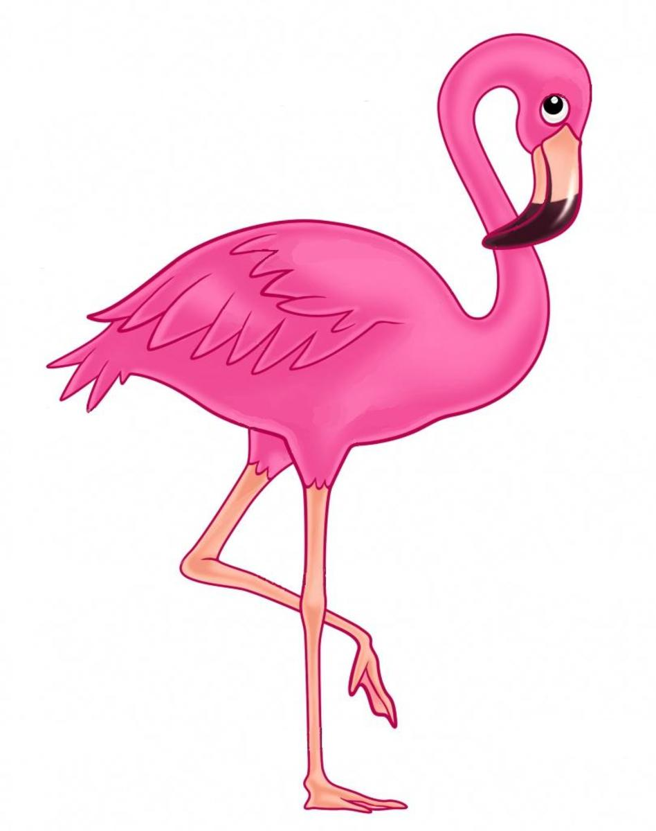 My favorite animal is a flamingo because....
