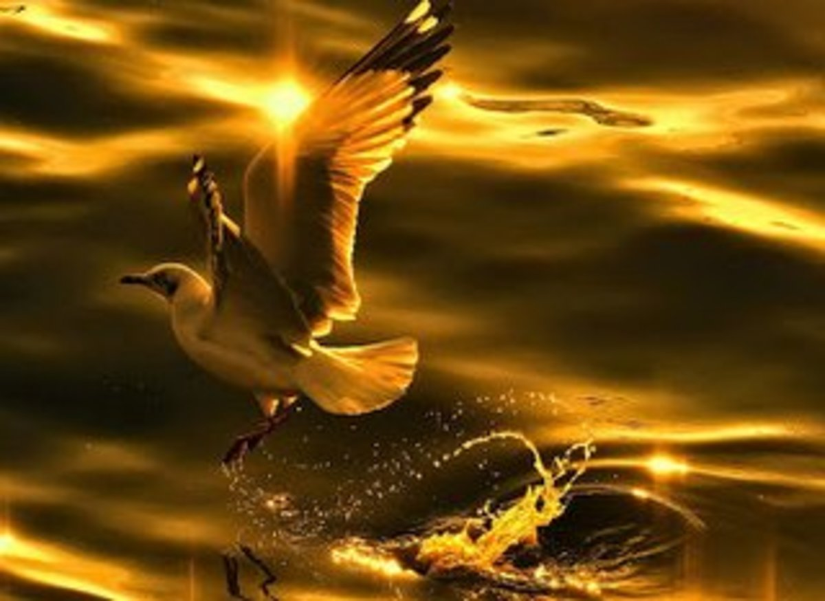 Ancient India was also known as The Golden Bird
