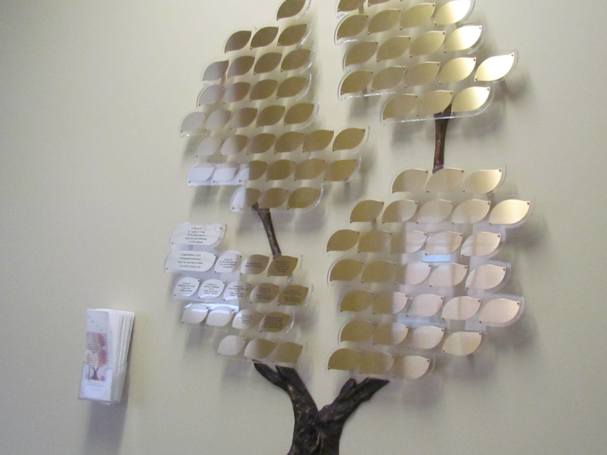 A beautiful display of a tree inside the lobby of the Jefferson Cancer Center at Riddle Hospital.