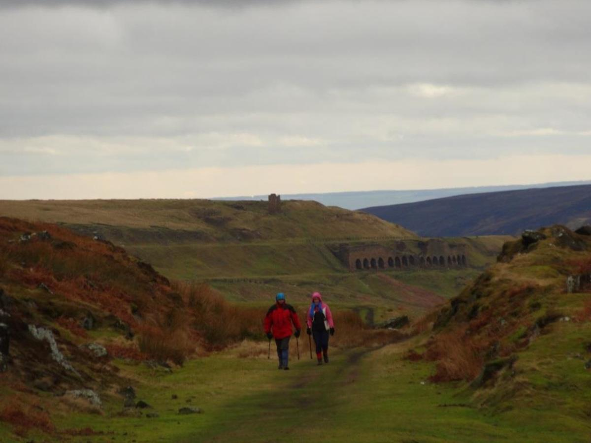 A long view of the West Kilns with the last bestiges of Sheriff's Pit behind on the hillside