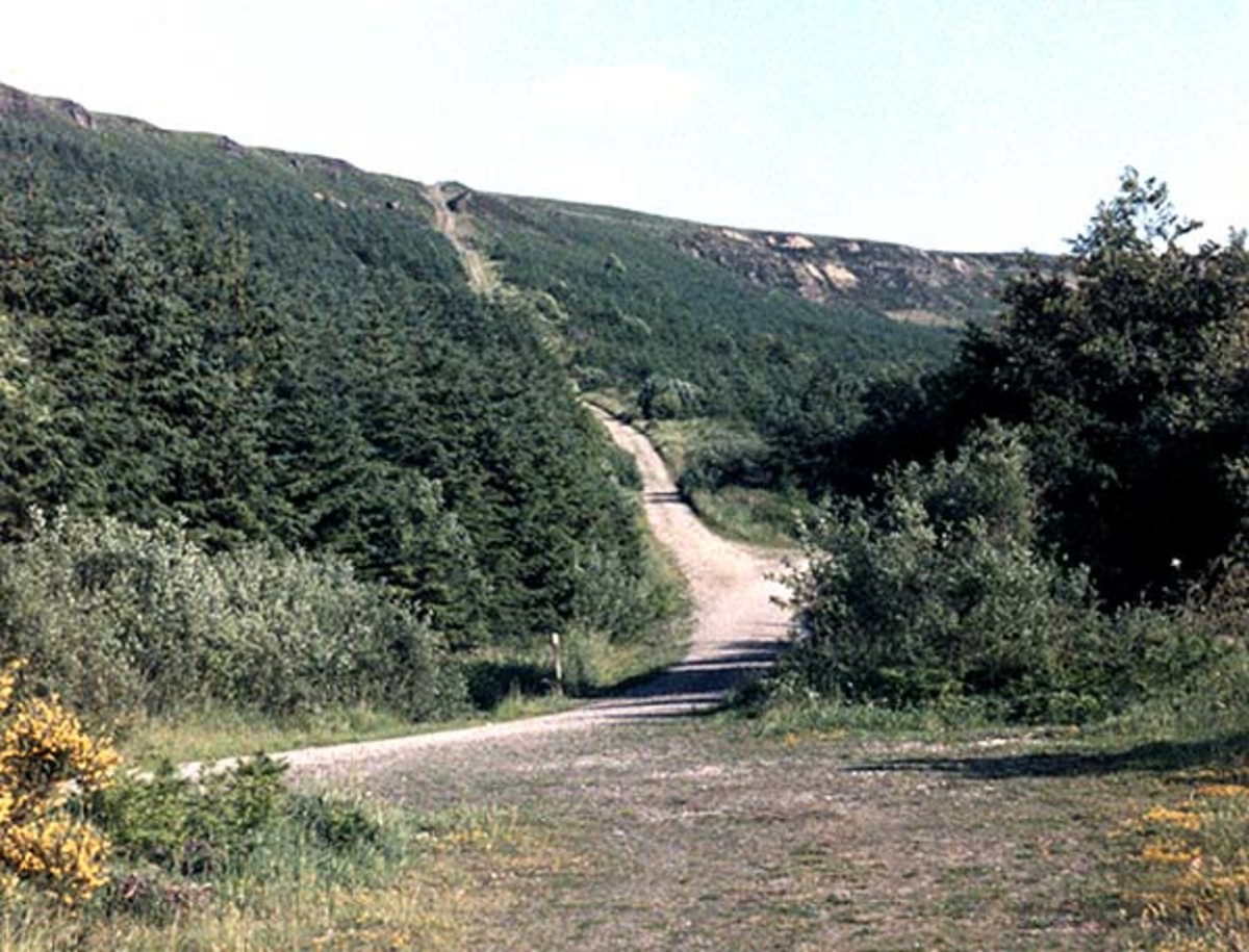 Ingleby Incline now, the view below was taken from close to the trees on the right, opposite where the weigh house was