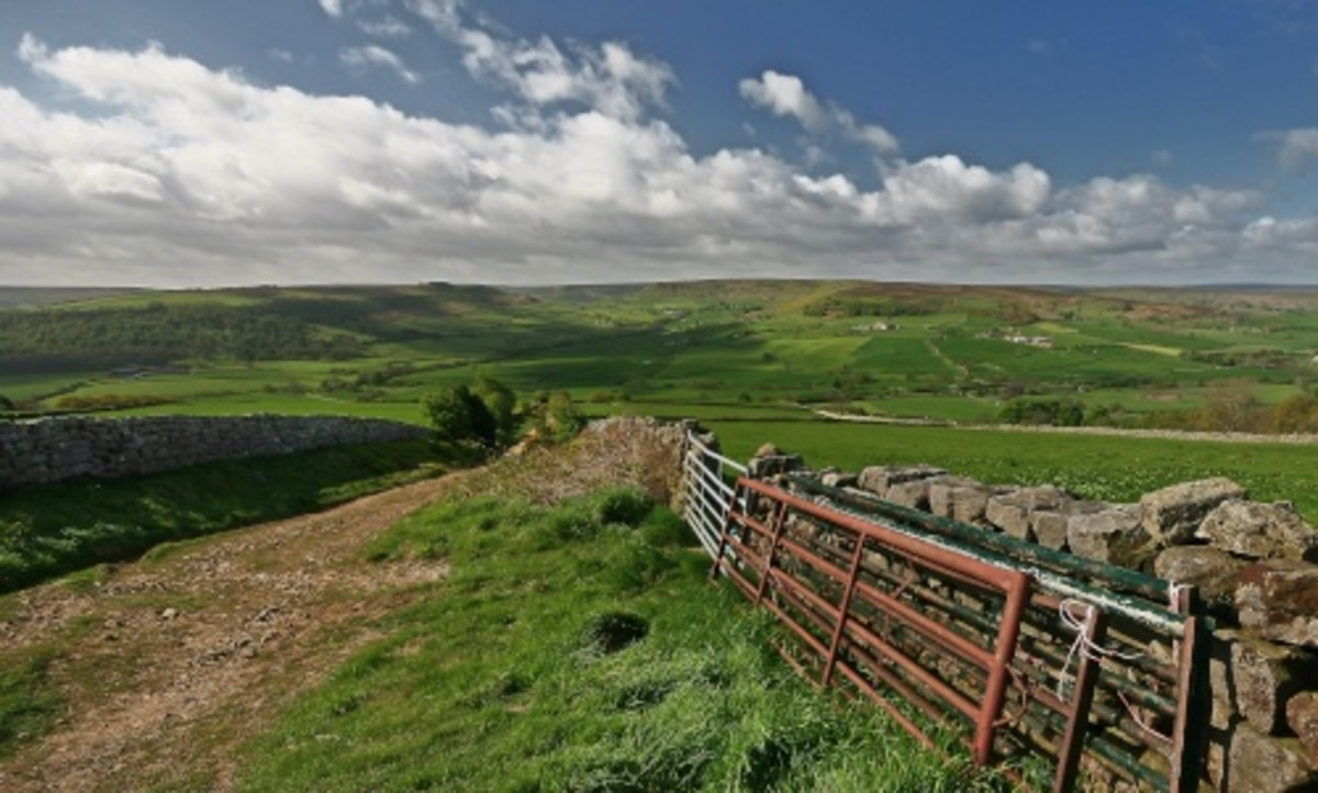 The North Yorkshire Moors above Danby on a fine day. It's not generally as wet this side of Yorkshire as in the west, although you can get some penetrating storms and winds in from the sea