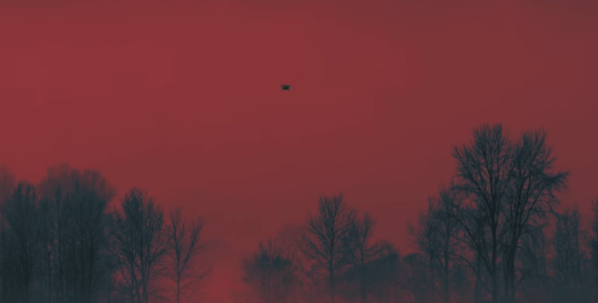 The single bird in the red sky at 1:53.