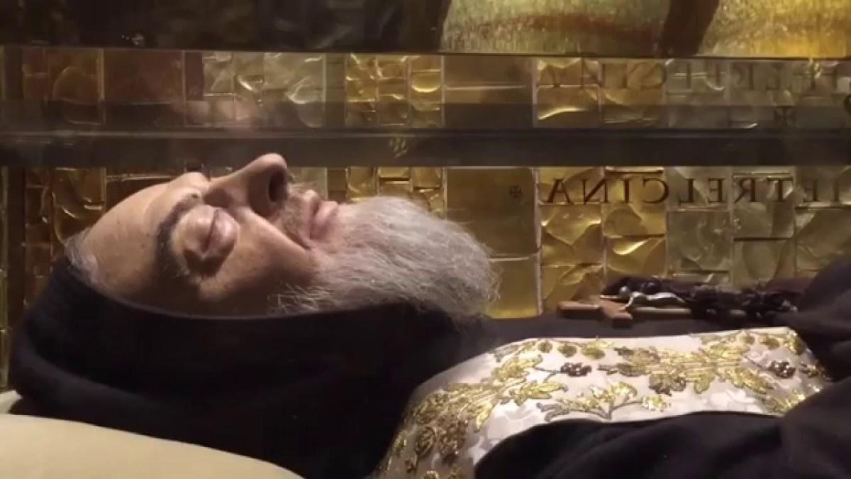 Padre Pio Incorruptible.