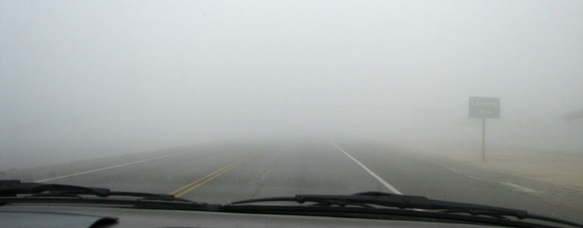 Fog along State Route 46