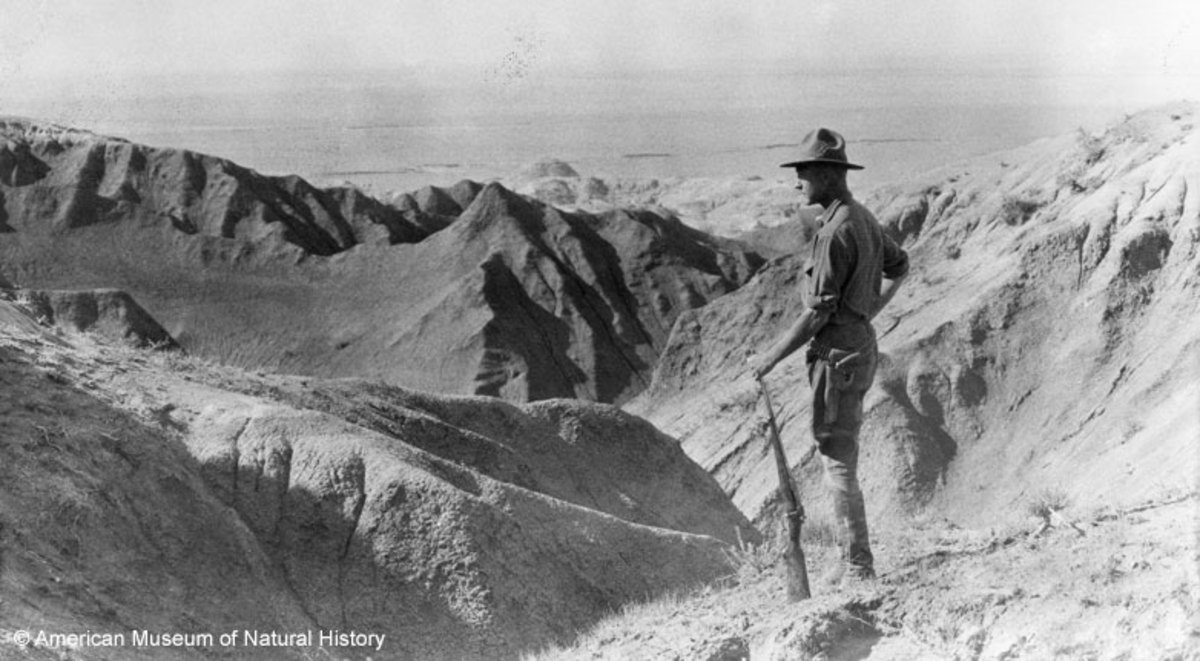 Roy Chapman Andrews looking at Gobi desert in Mongolia