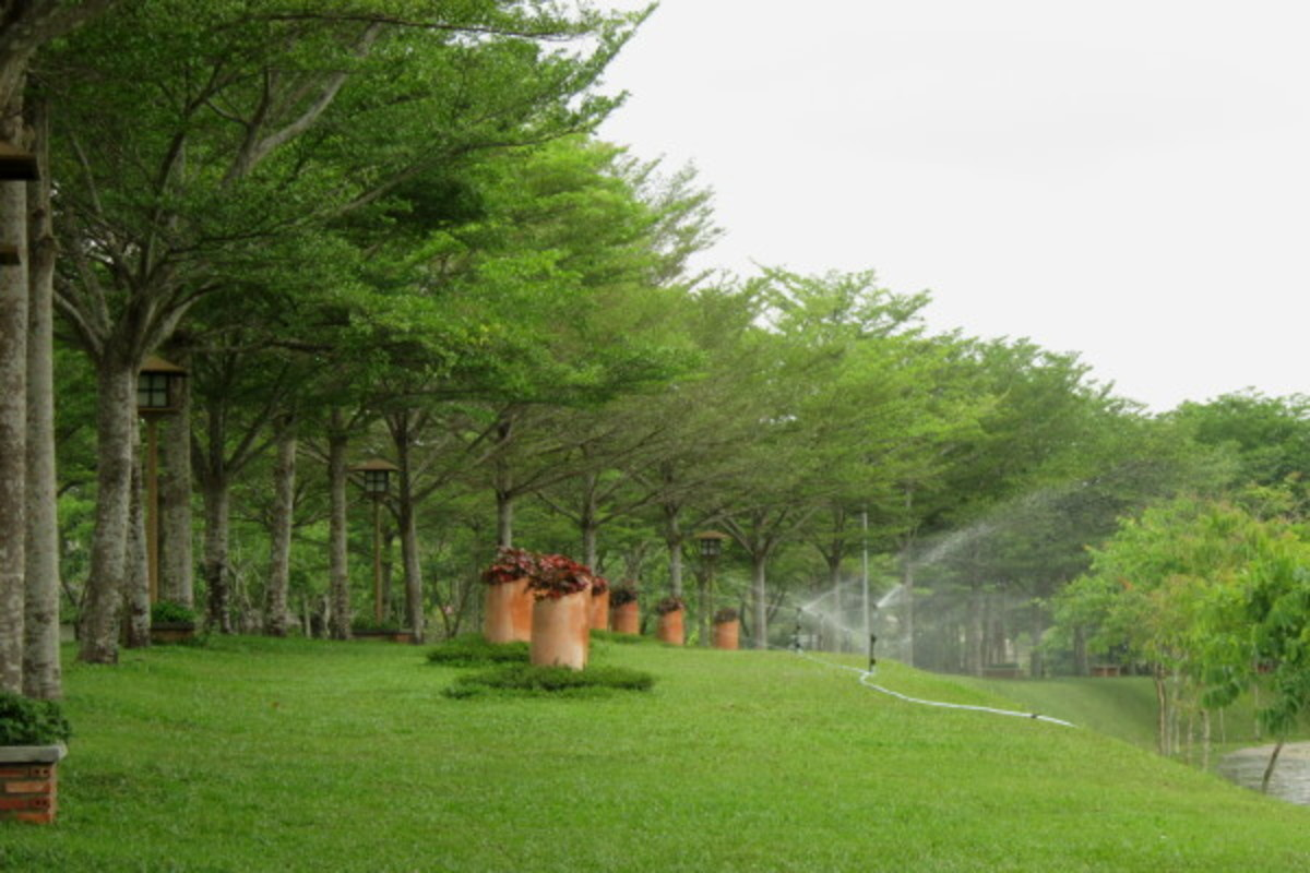 Verdant space with lush shady trees and ever-green lawn offers a pleasing atmosphere for you to relax