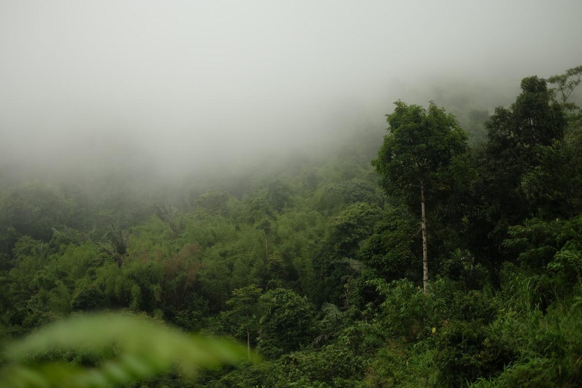 Morning breaks on Chua Chan Mountain