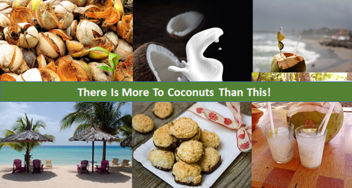 There is more to the coconut fruit than most people will ever believe.