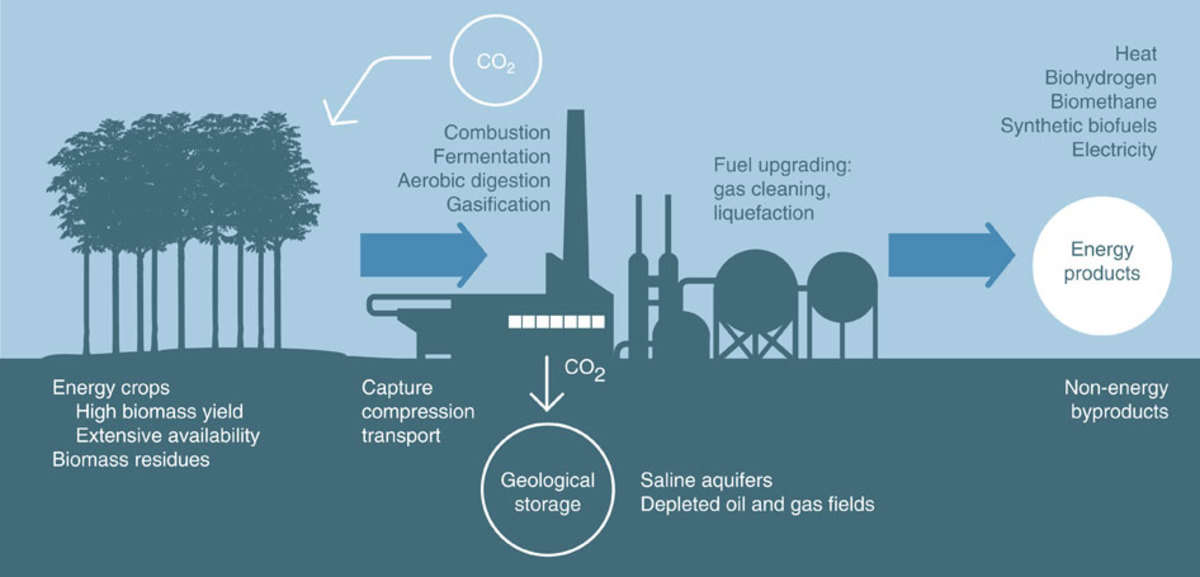 Renewable Energy: What If We Can Capture Carbon Dioxide?
