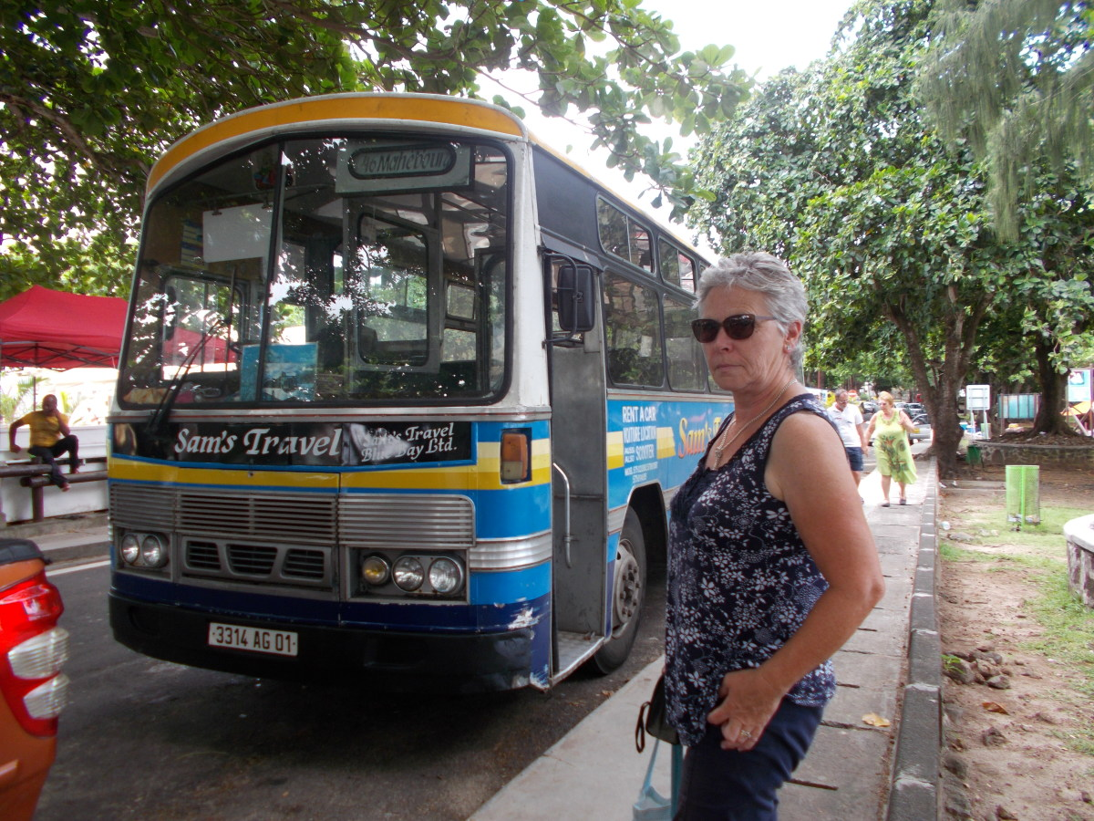 Colourful buses abound - driver opposite having a rest!