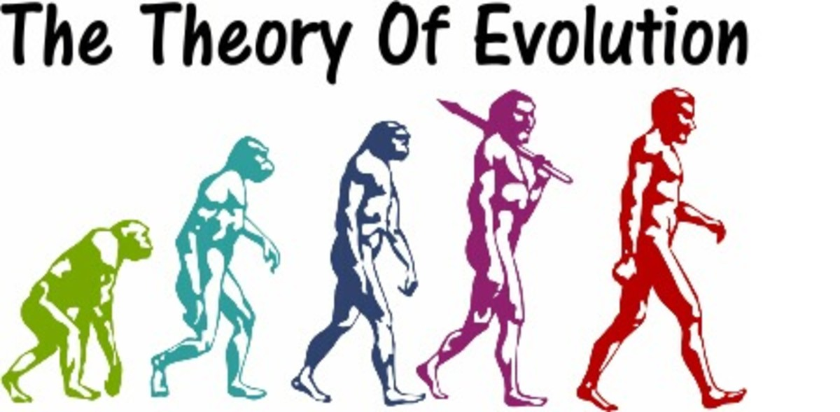 My Problems With the Theory of Evolution