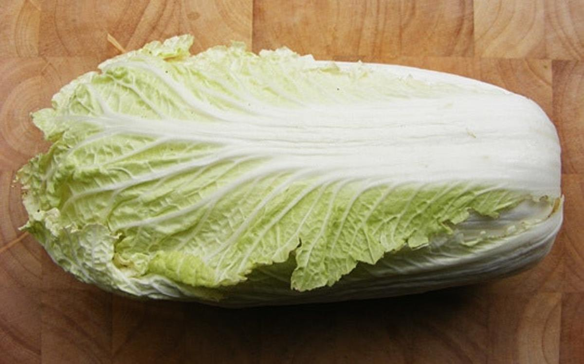 The Napa cabbage is also called the Chinese cabbage.