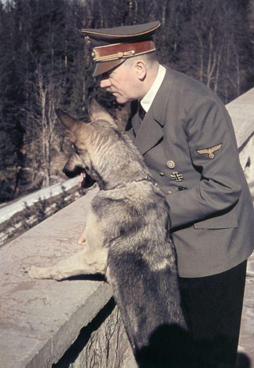 Hitler's Best Friend: Blondi the German Shepherd