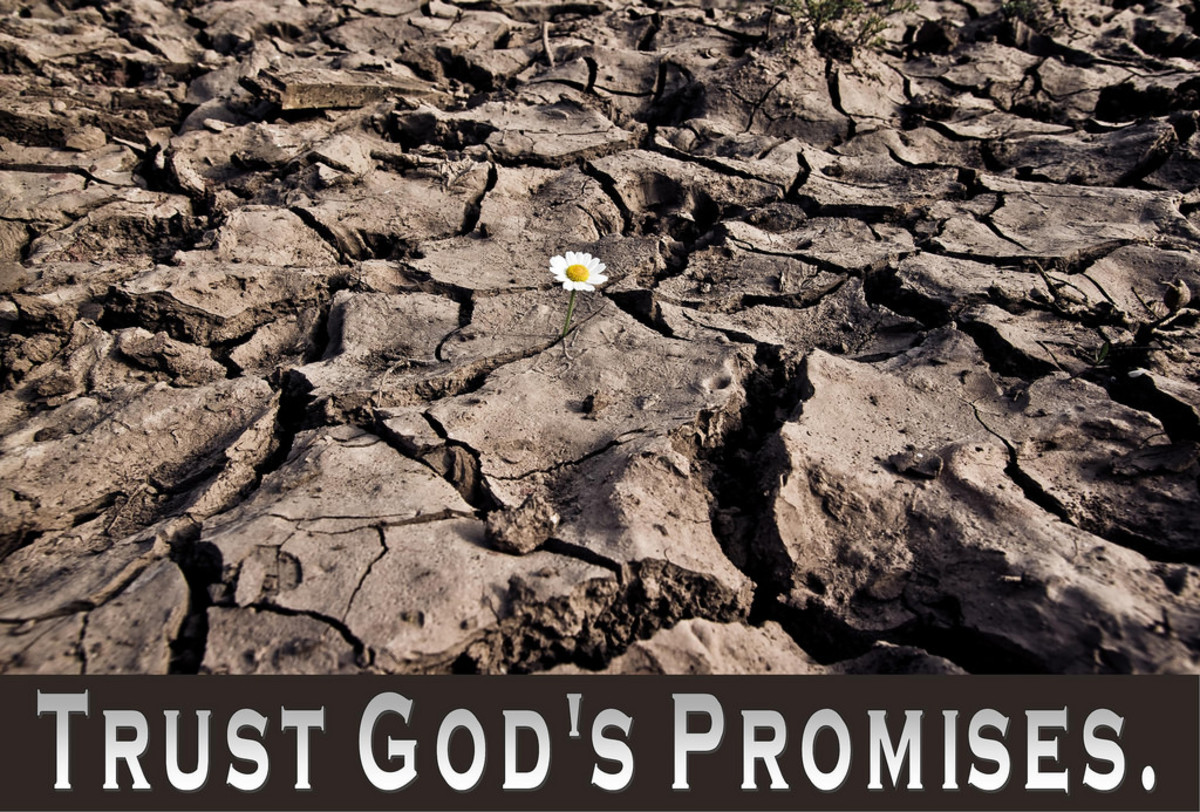 God's Command or God's Promise: What's the Difference?