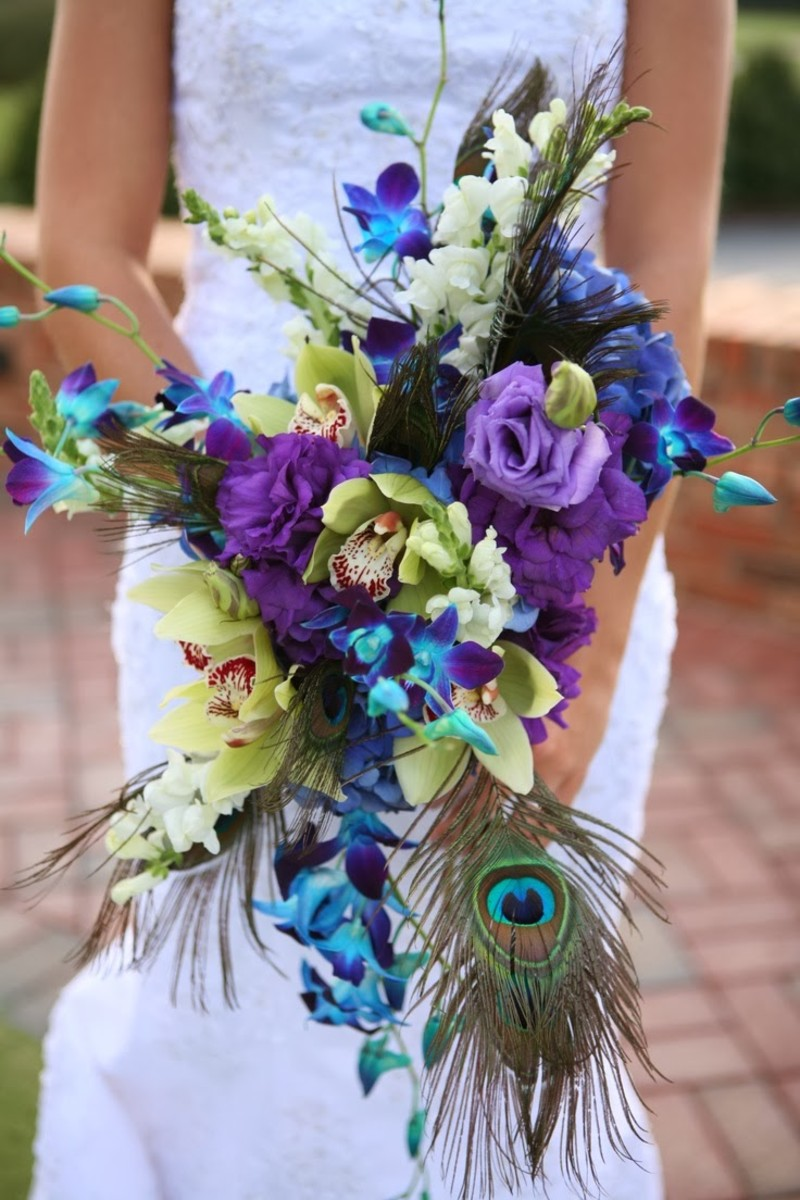 Peacock Feather Weddings