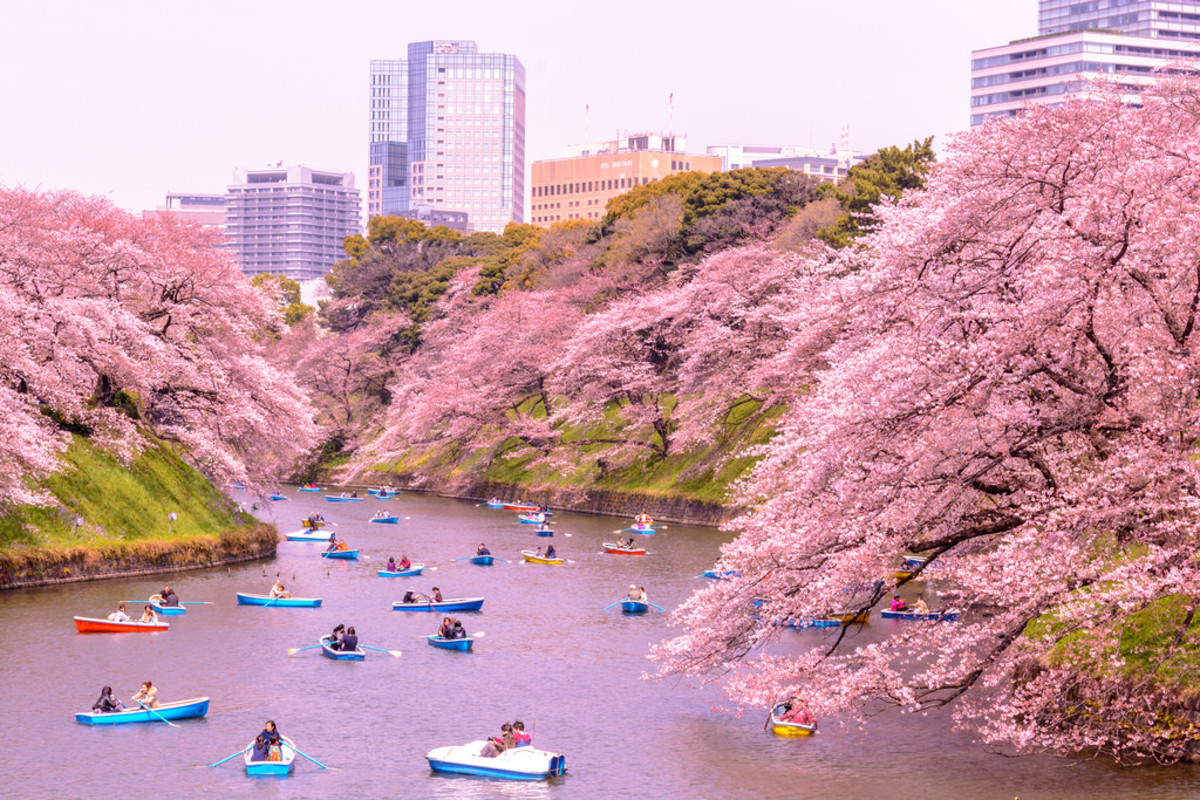 The Pros and Cons of Living in Japan