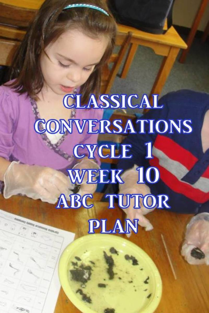 Classical Conversations Cycle 1 Week 10 Abc Tutor Plan - Science Activity: Dissecting an owl pellet