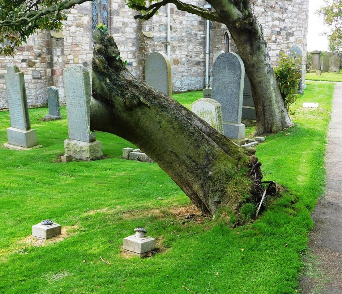 a-brief-history-of-cemeteries-and-gravestones-in-england-an-easy-learning-and-revision-guide