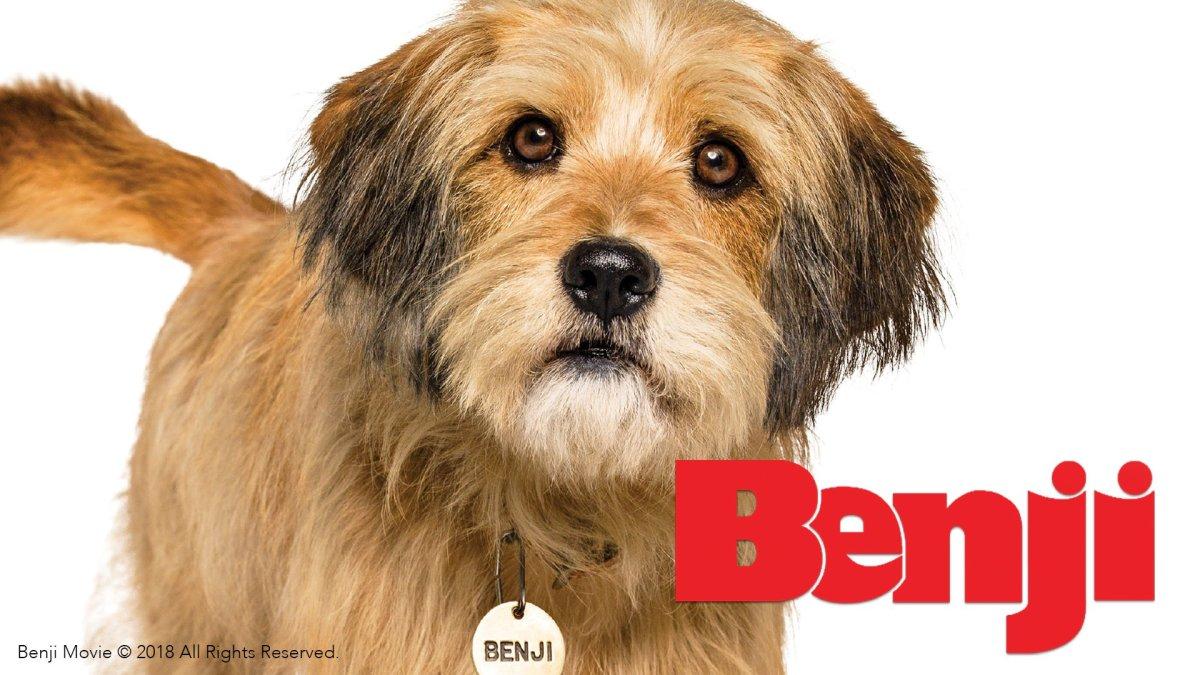 Benji (2018) Film Review
