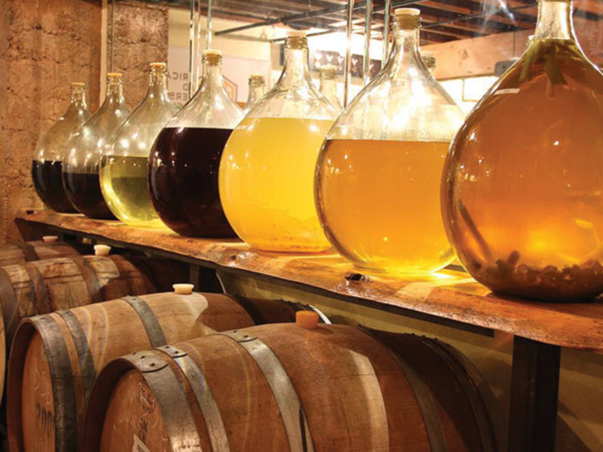making-mead-the-easy-and-tasty-ancient-honey-wine